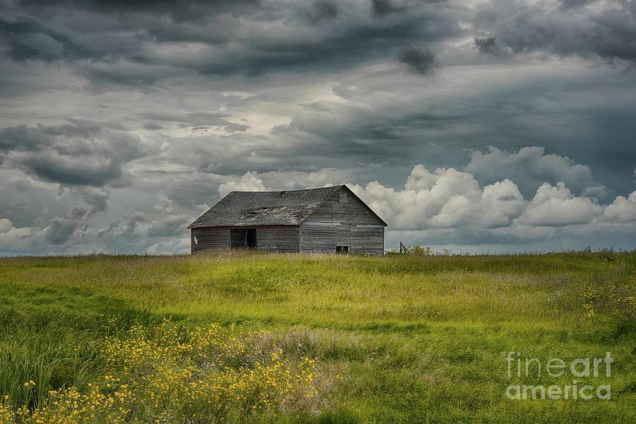 Canada Photograph - Under Heavy Skies by Ian McGregor
