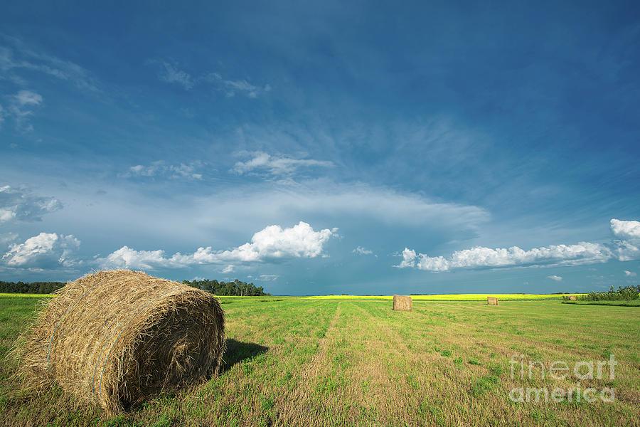 Canada Photograph - Under Prairie Skies by Ian McGregor