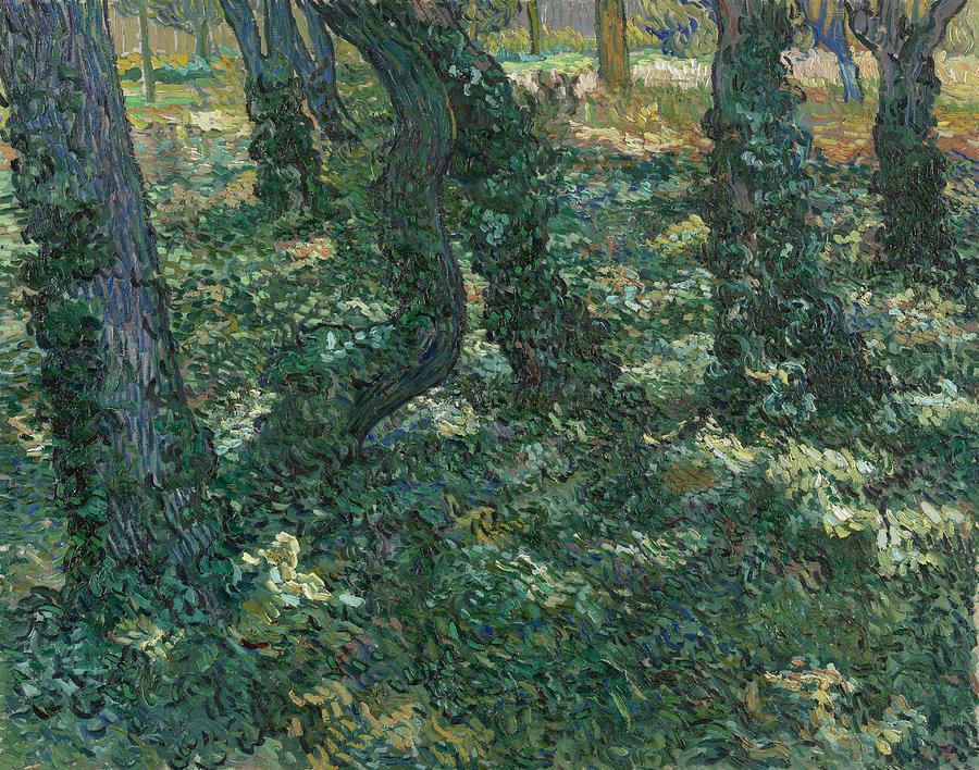 Undergrowth Saint Remy De Provence July 1889 Vincent Van Gogh 1853  1890 Painting