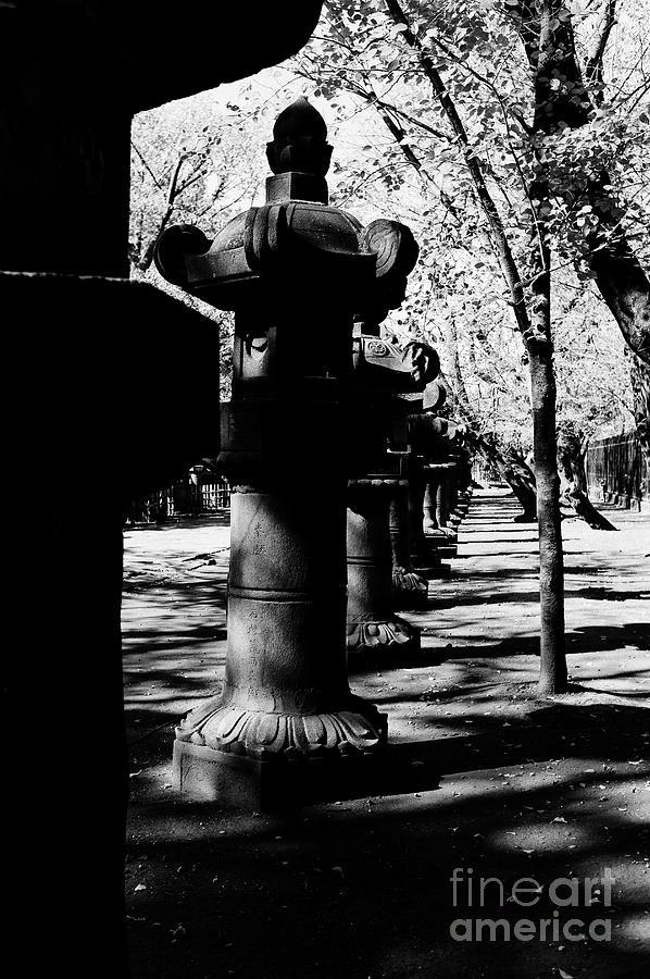 Uneo Park Tokyo Photograph