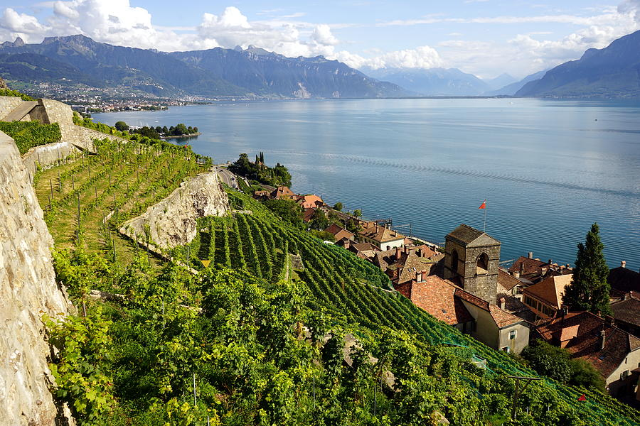 Lavaux Photograph - UNESCO Lavaux Vineyards by Two Small Potatoes
