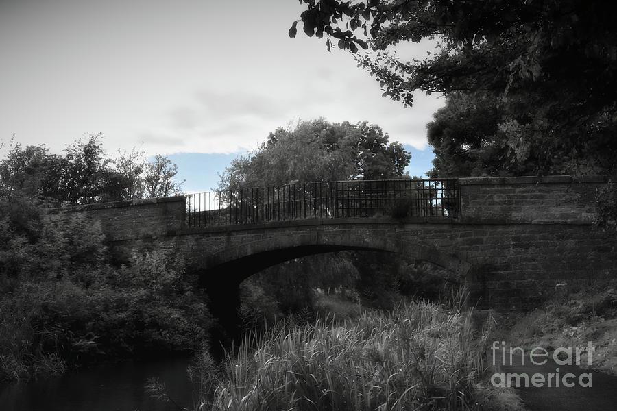 Union Canal Bridge 13 - Jaw Bridge  by Yvonne Johnstone