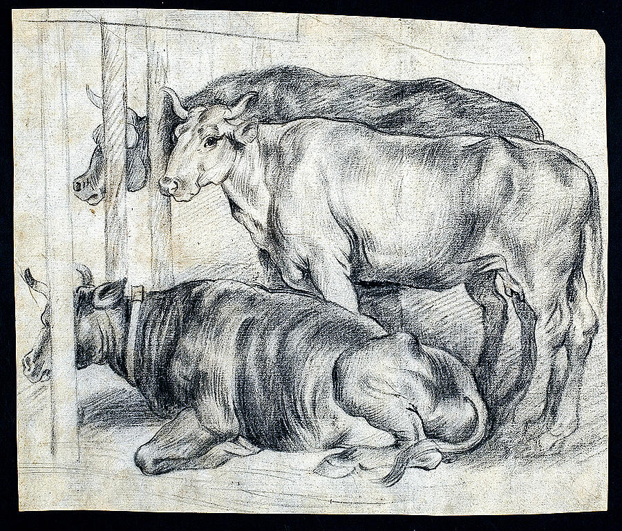 Unknown Flemish 1st Half Of The 17th Century  Peter Paul Rubens Flemish 28 06 1577 30 05 1640 Worksh Painting
