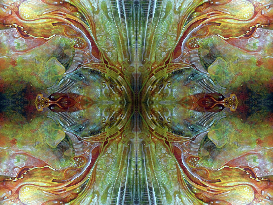 Untitled Abstract Colors Mirror 2 Digital Art