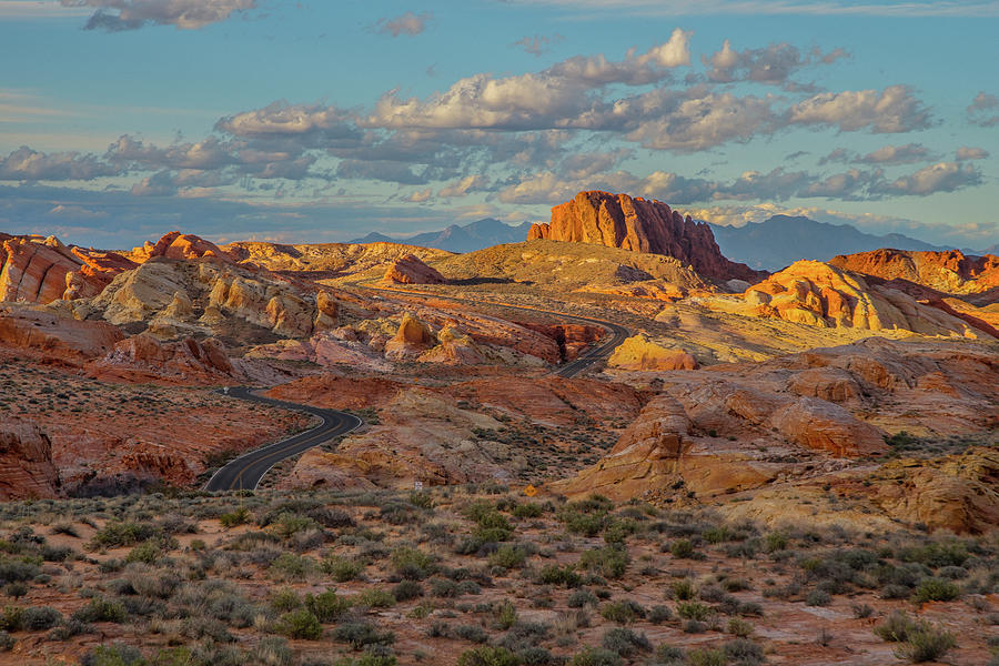 Valley of Fire by Matthew Irvin