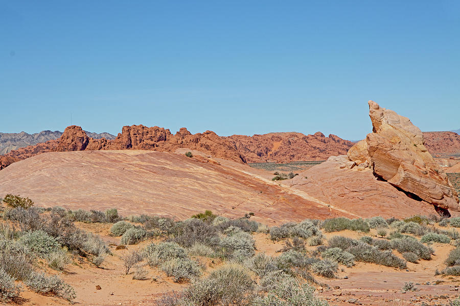 valley of fire Nevada red rocks, hills blue sky vegetation scrub 2 3142020 0311 Photograph by David Frederick