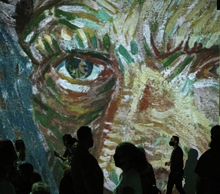 Van Gogh 0435 Photograph