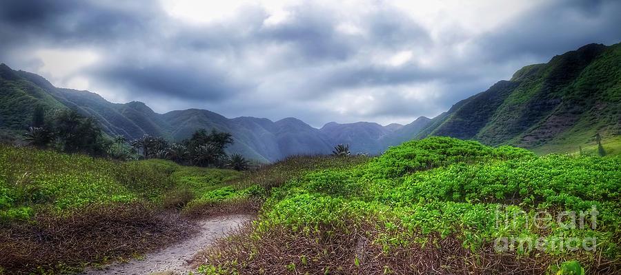 Vast Valley Photograph
