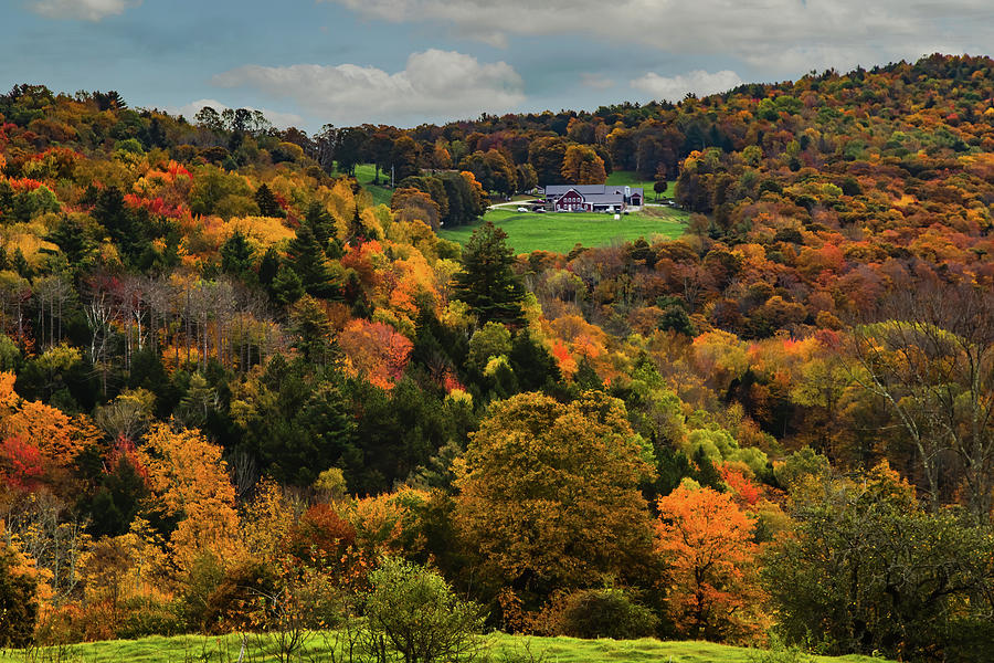 Vermont Farm in the center of the fall colors by Jeff Folger