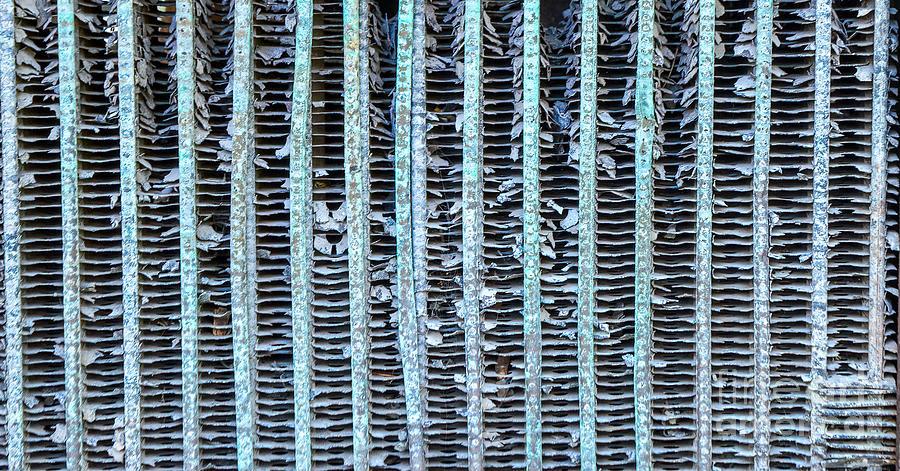 Vertical Lines Photograph