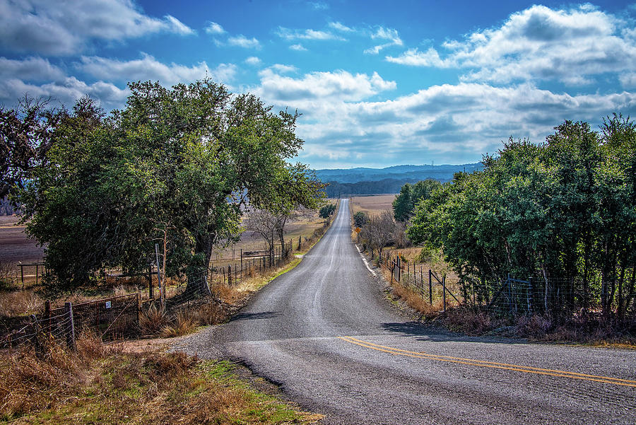 View Down a Hill Country Road  by Lynn Bauer