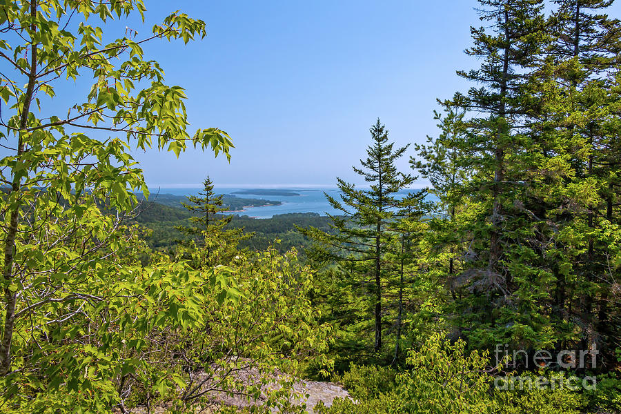 View From Beech Mountain Acadia National Park Photograph