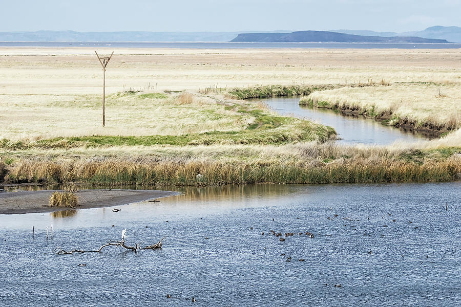 View From Malheur Nwr Headquarters Photograph