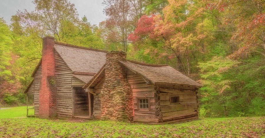 View From the Woods, Henry Whitehead Cabin by Marcy Wielfaert