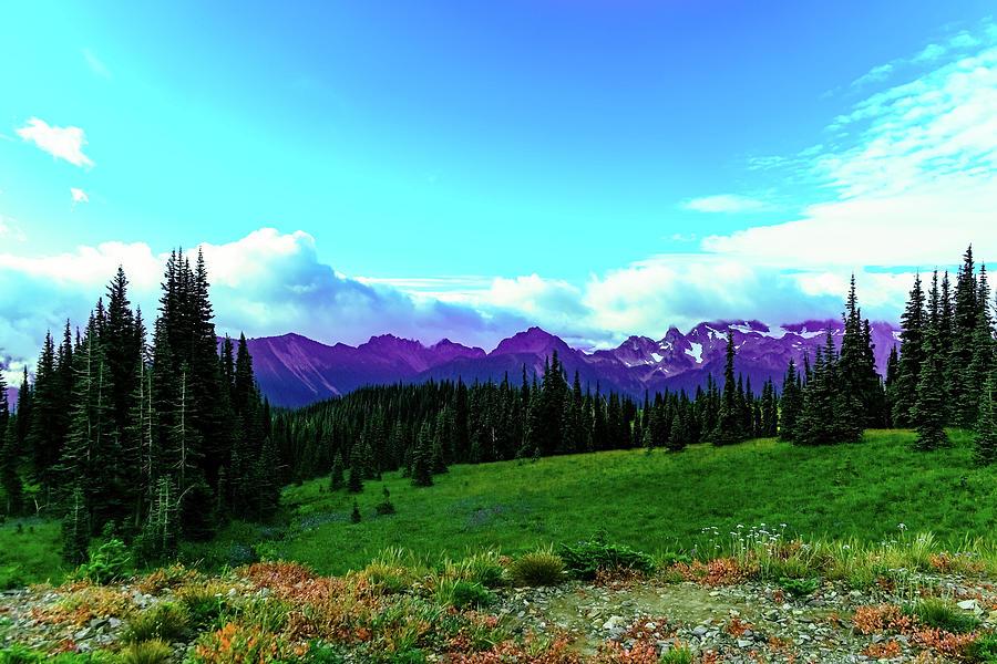 View Of The Cascades Near Sunrise Photograph