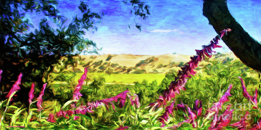 Vineyards and Flowers by Jerome Stumphauzer