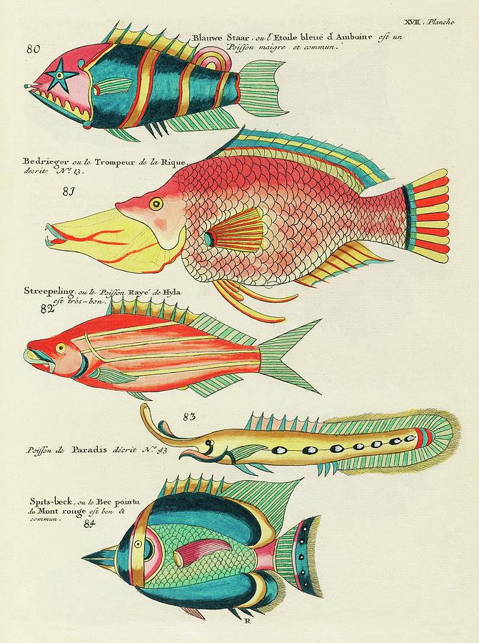 Vintage, Whimsical Fish And Marine Life Illustration By Louis Renard - Blauwe Staar, Le Trompeur Digital Art