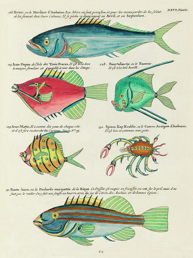 Vintage, Whimsical Fish And Marine Life Illustration By Louis Renard - Byter, Bonte Hoen, Popou Digital Art