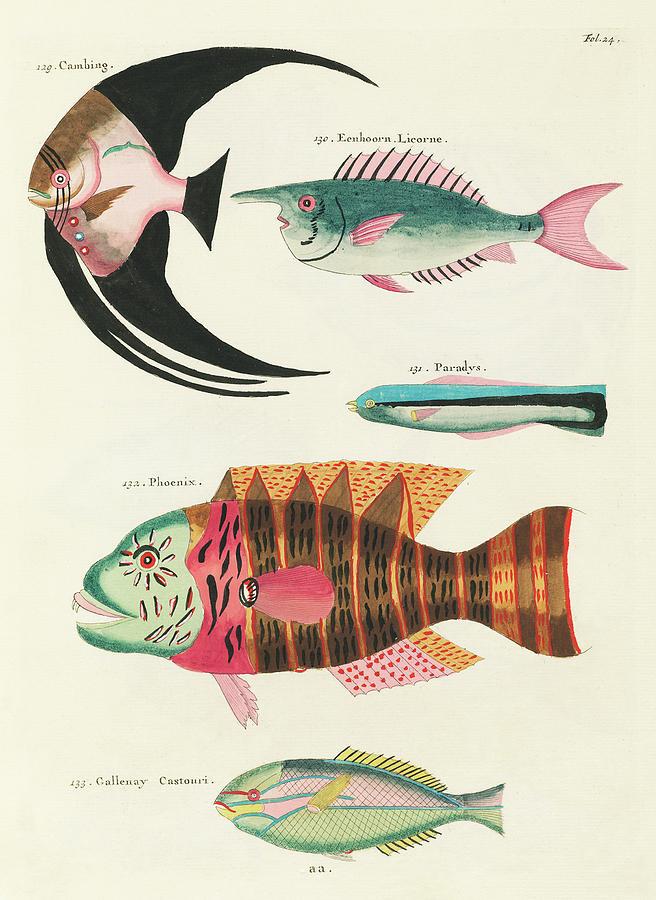 Vintage, Whimsical Fish And Marine Life Illustration By Louis Renard - Cambing, Phoenix, Paradys Digital Art