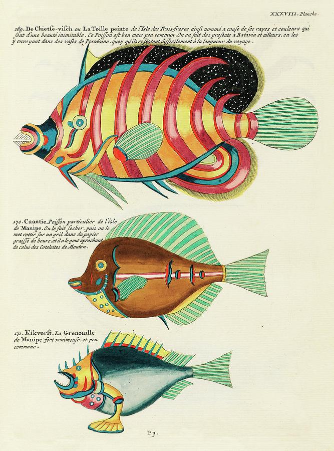 Vintage, Whimsical Fish And Marine Life Illustration By Louis Renard - Chietse Visch, Caantie Digital Art