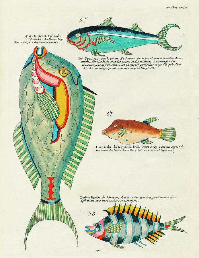 Vintage, Whimsical Fish And Marine Life Illustration By Louis Renard - De Groot Eylander, Springer Digital Art