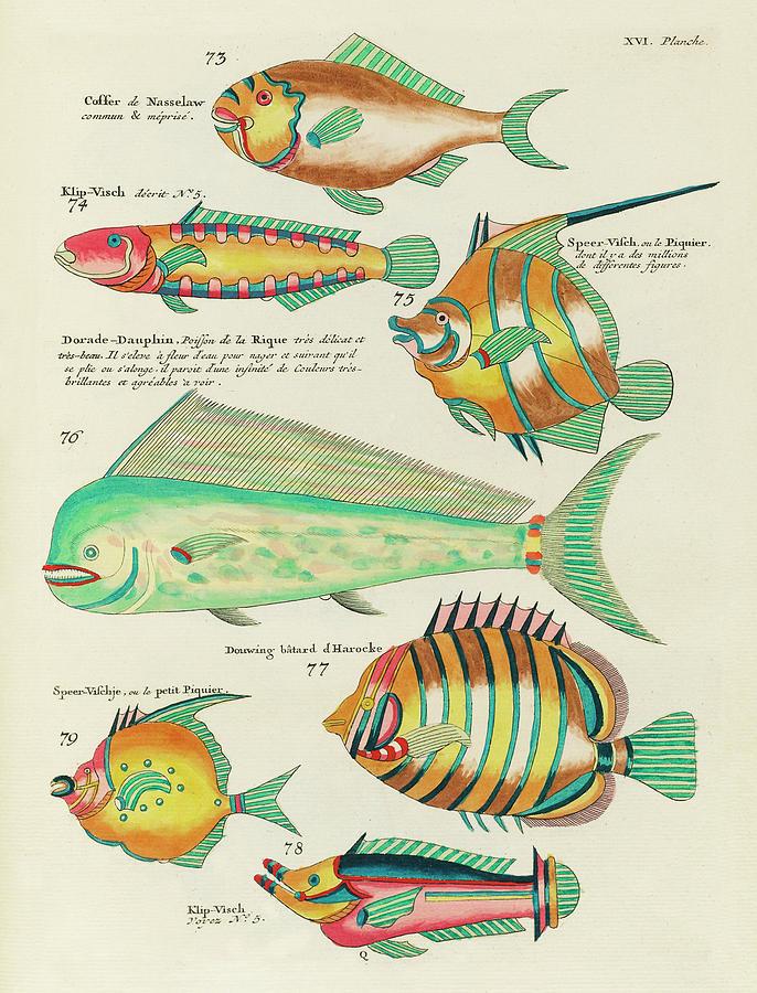 Vintage, Whimsical Fish And Marine Life Illustration By Louis Renard - Dorade Dauphin, Speer Visch Digital Art
