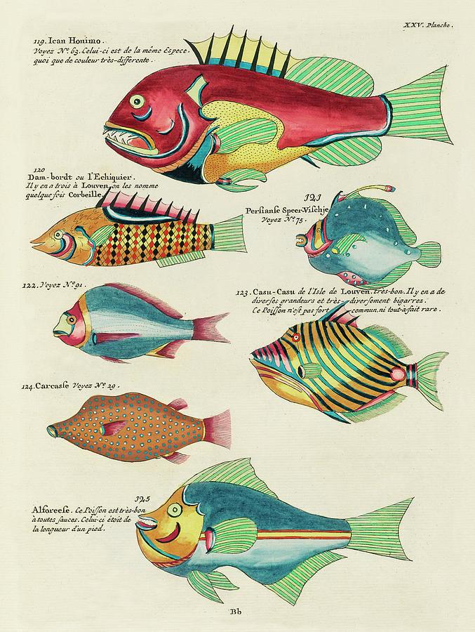 Vintage, Whimsical Fish And Marine Life Illustration By Louis Renard - Ican Honimo, Casu Casu Digital Art