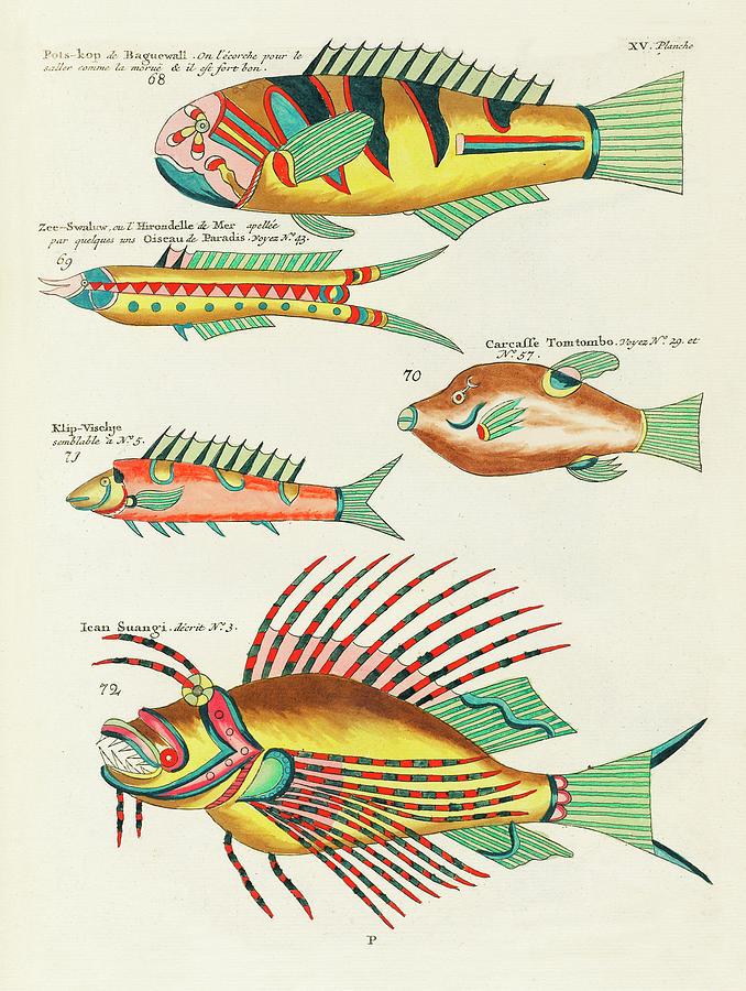 Vintage, Whimsical Fish And Marine Life Illustration By Louis Renard - Ican Suangi, Pots Kop Digital Art