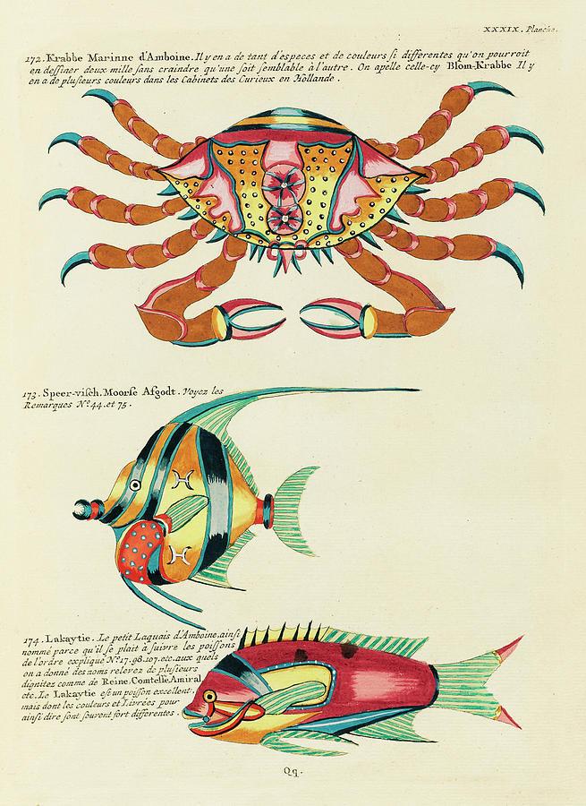 Vintage, Whimsical Fish And Marine Life Illustration By Louis Renard - Krabbe Marinne, Speer Visch Digital Art