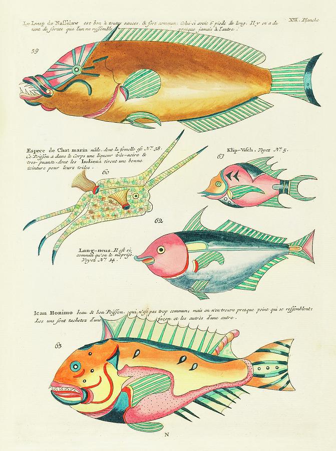 Vintage, Whimsical Fish And Marine Life Illustration By Louis Renard - Le Loup De Nasselaw, Honimo Digital Art