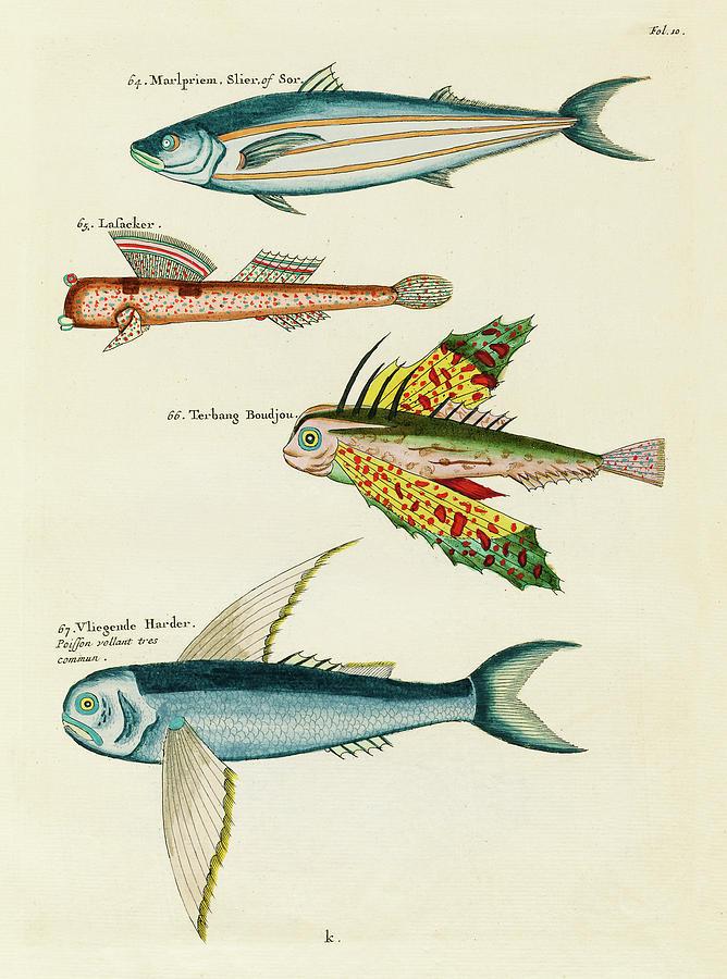 Vintage, Whimsical Fish And Marine Life Illustration By Louis Renard - Marlpriem, Vligende Harder Mixed Media