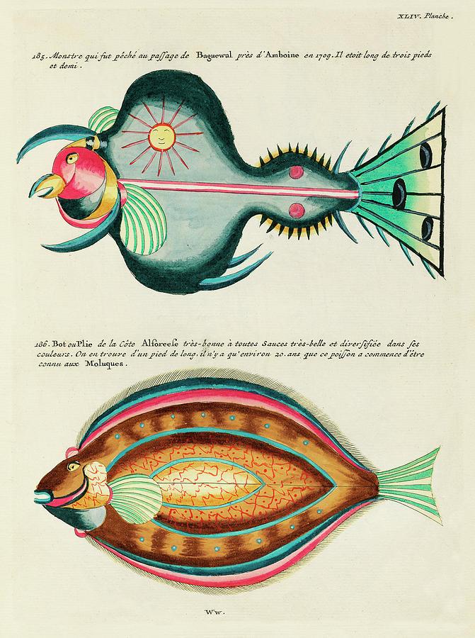 Vintage, Whimsical Fish And Marine Life Illustration By Louis Renard - Monster Fish, Flounder Fish Digital Art