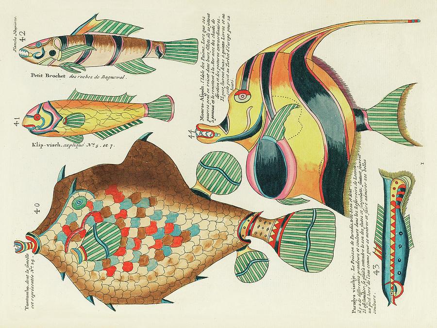 Vintage, Whimsical Fish And Marine Life Illustration By Louis Renard - Moorish Afgodt, Tomtombo Digital Art