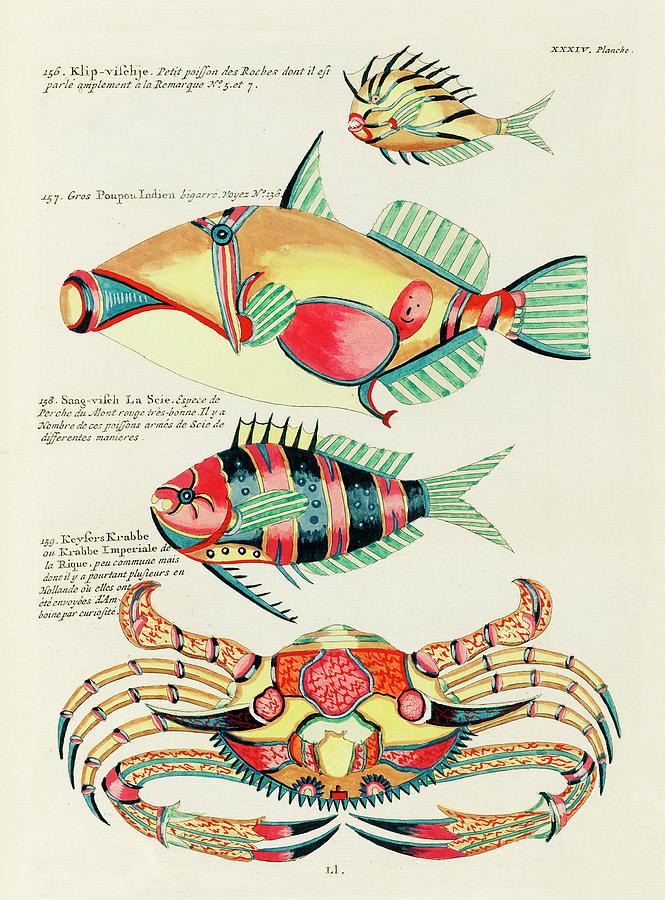 Vintage, Whimsical Fish And Marine Life Illustration By Louis Renard - Poupou Indien, Keysers Krabbe Digital Art