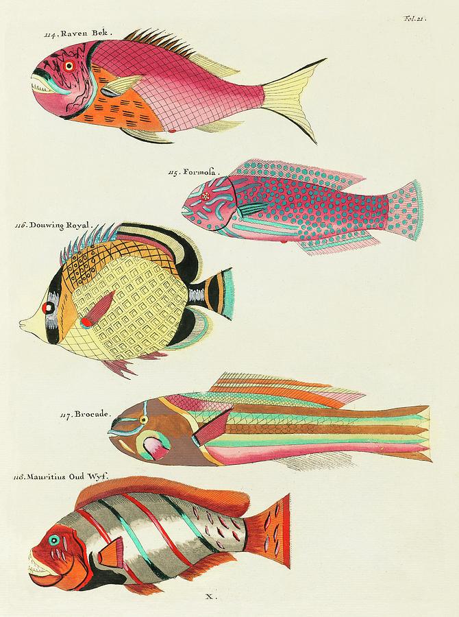 Vintage, Whimsical Fish And Marine Life Illustration By Louis Renard - Raven Bek, Formosa, Brocade Digital Art