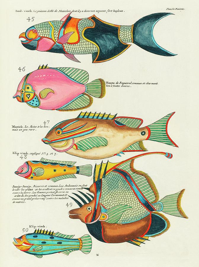 Vintage, Whimsical Fish And Marine Life Illustration By Louis Renard - Saal Visch, Joosje-joosje Digital Art