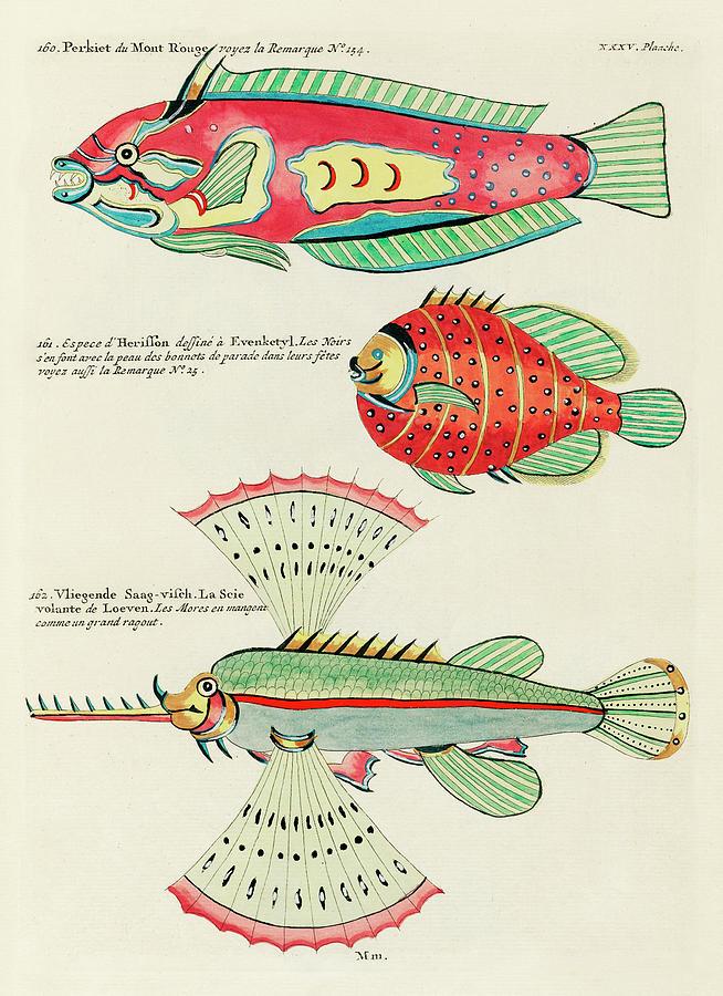 Fish Digital Art - Vintage, Whimsical Fish and Marine Life Illustrations by Louis Renard - Puffer Fish, Flying Fish by Studio Grafiikka