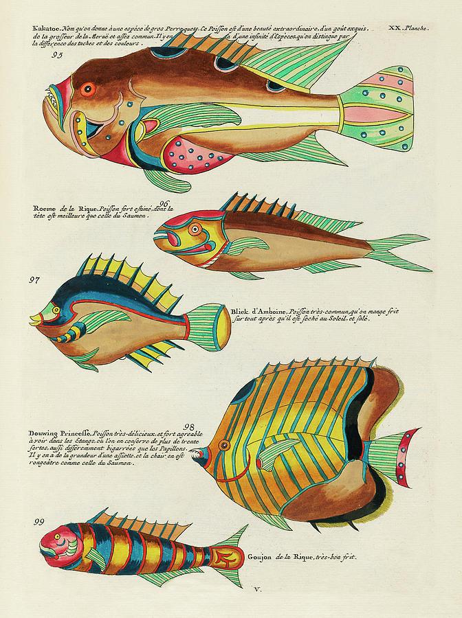 Vintage, Whimsical Fish And Marine Life Illustration By Louis Renard - Kakatoe, Douwing Princesse Digital Art