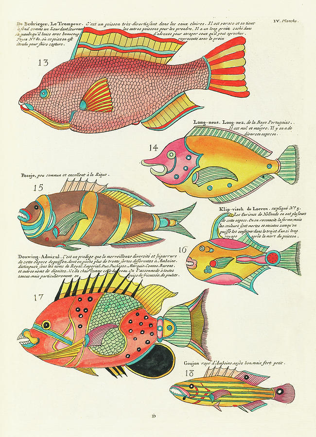 Vintage, Whimsical Fish And Marine Life Illustration By Louis Renard - Le Trompeur, Douwing Admiral Digital Art