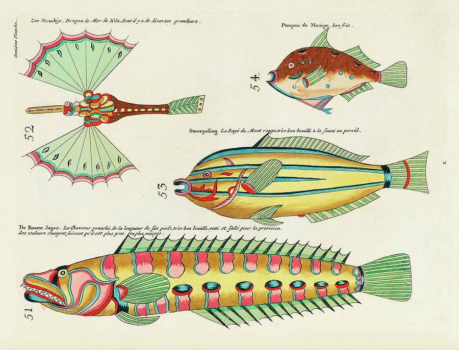 Vintage, Whimsical Fish And Marine Life Illustration By Louis Renard - Sea Dragon, De Bonte Jager Digital Art