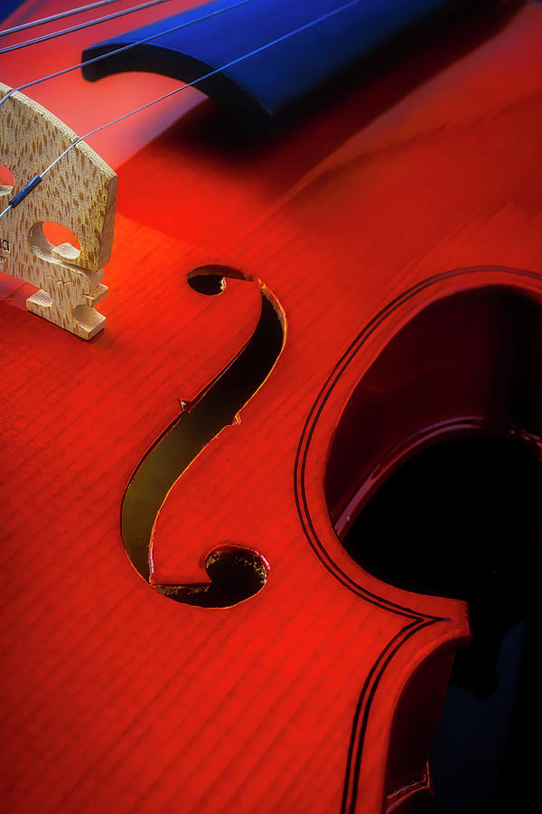 Violin Detail by Garry Gay