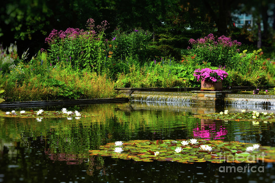 Visual Delight by Yvonne Johnstone