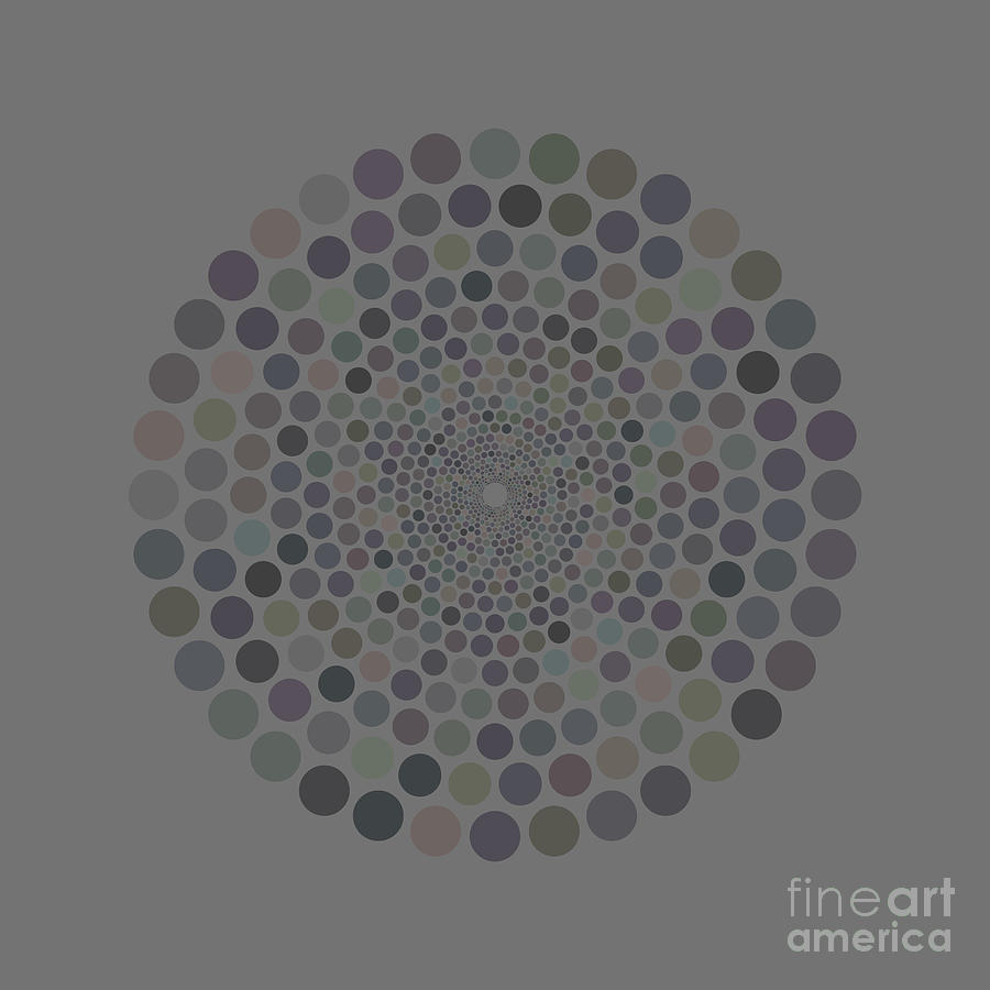 Vortex Circle - Gray Painting