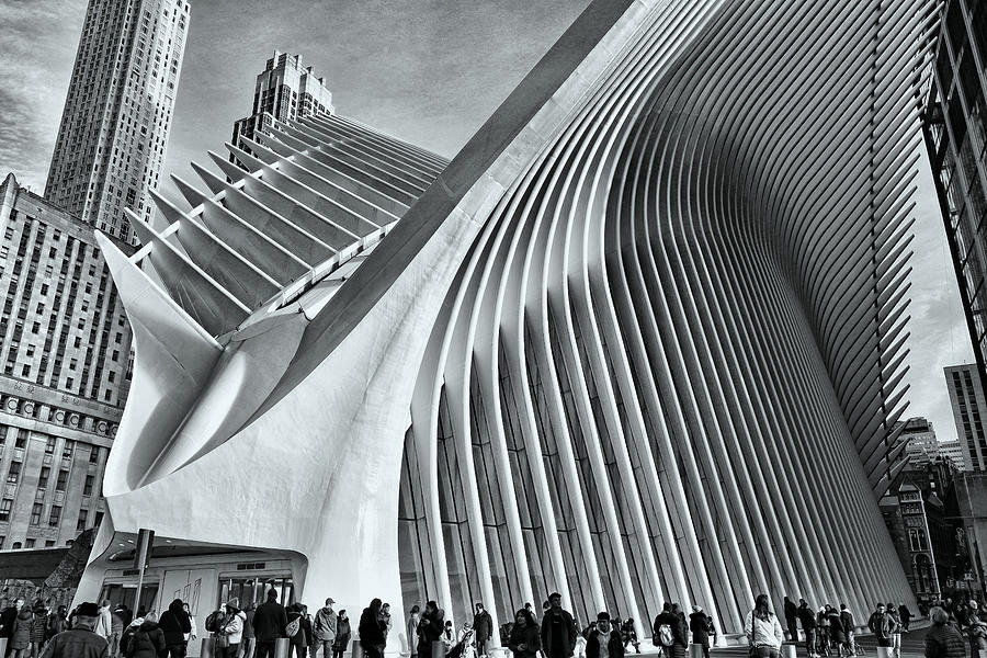 W T C Transportation Hub Oculus Exterior # 23 Photograph
