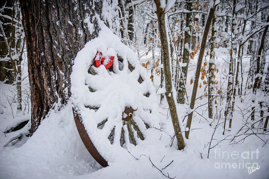 Wagon Wheel Fresh Snow by Alana Ranney