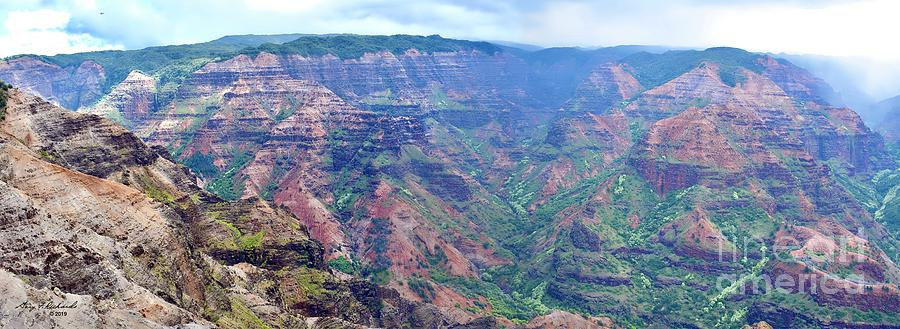 Waimea Canyon Kauai Left Pano by Gary F Richards