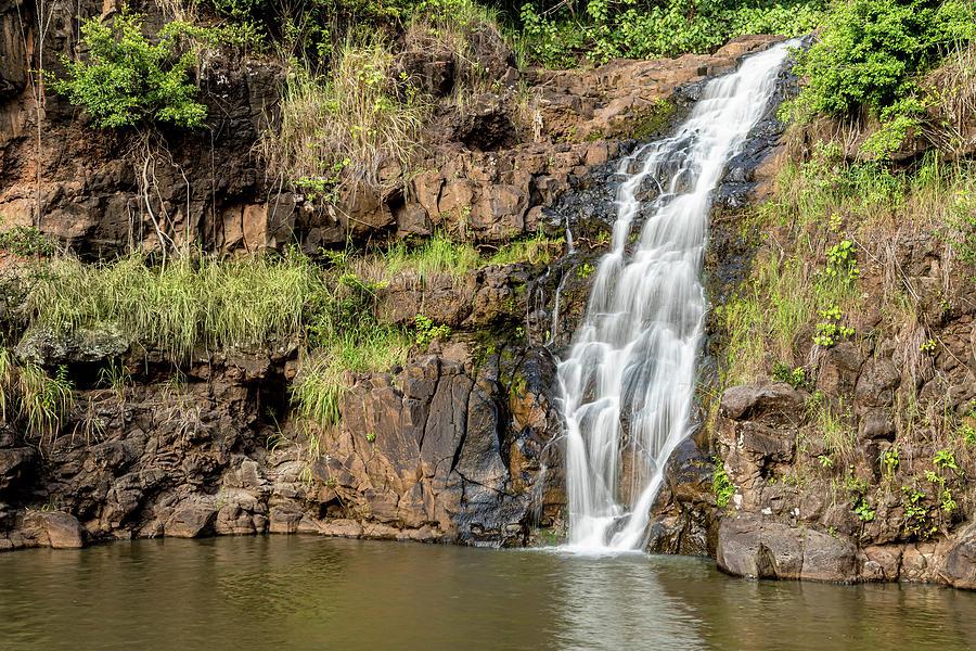 Waimea Falls by Kelley King