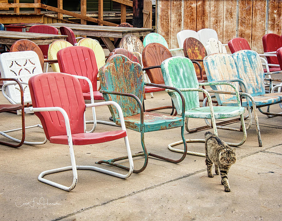 Nostalgia Photograph - Waiting for an Audience by Carol Fox Henrichs