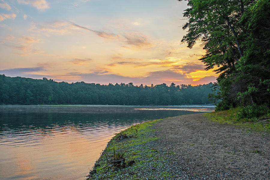 Walden Pond Summer Sunrise Concord MA by Toby McGuire