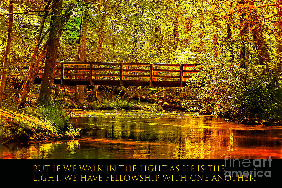 Walk In The Light Photograph